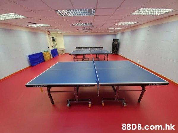 乒乓球訓練班(幼兒/小學/中學/成人)