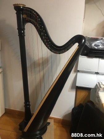 二手豎琴Lyon & Healy 40弦
