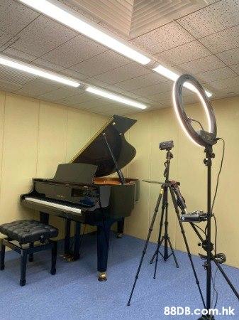 聘請聲樂導師,鋼琴導師,弦樂導師,敲擊樂導師